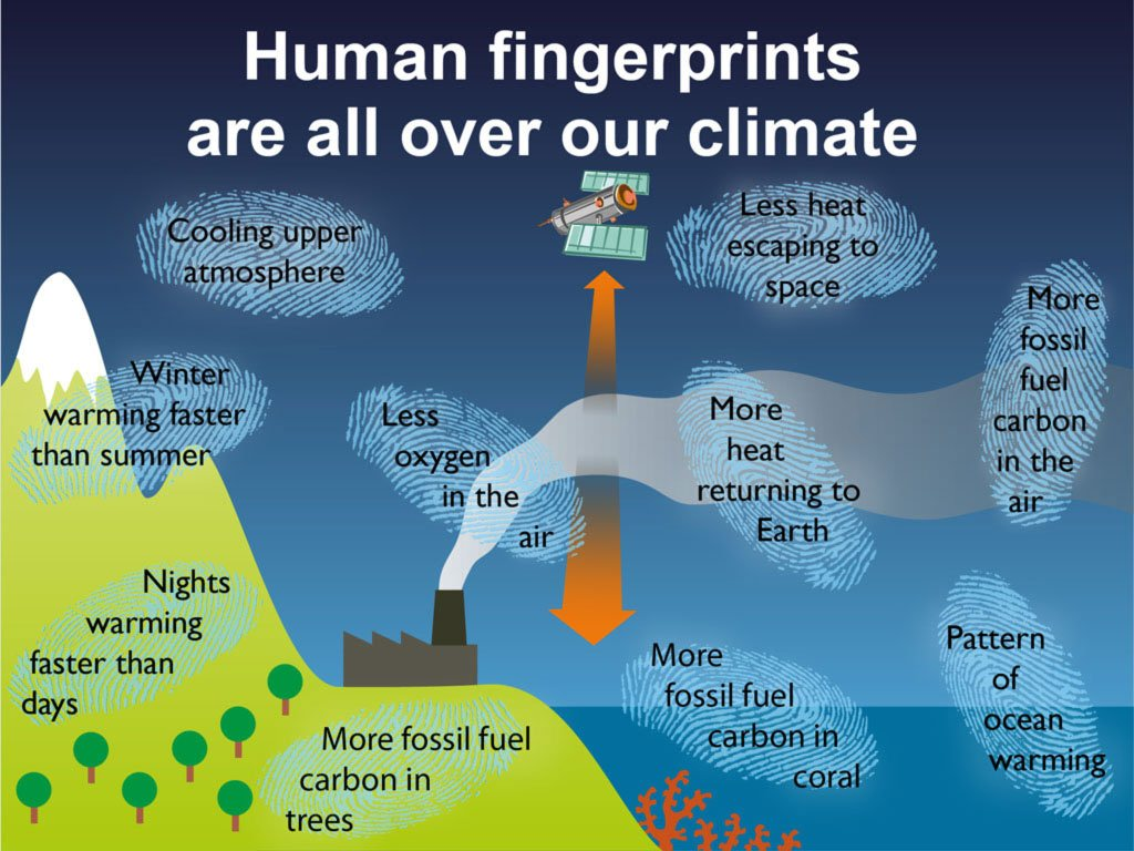 cause and effect essay of global warming